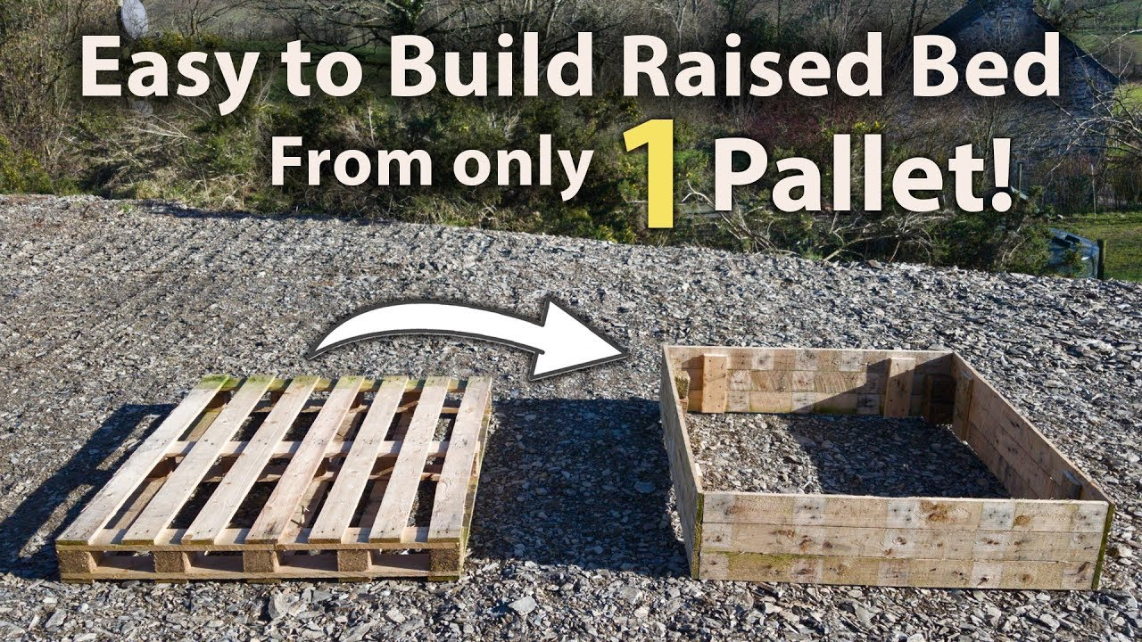 How To Build A Raised Bed From 1 Pallet Free And Easy Youtube