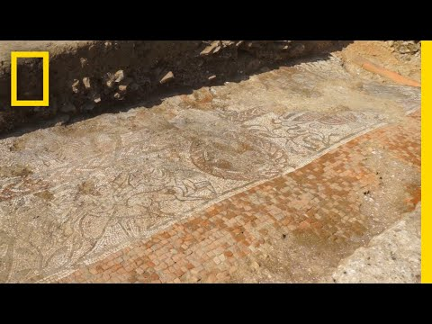 This Massive Roman Mosaic Was Unearthed in England | National Geographic
