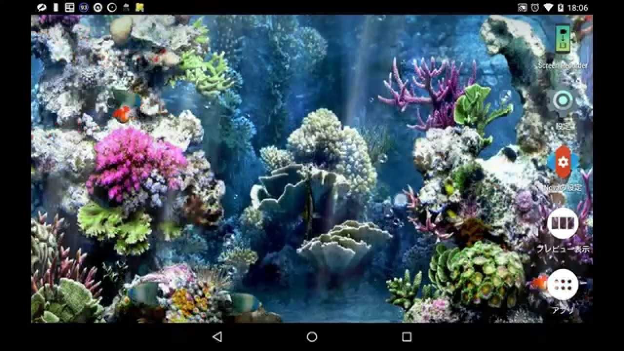 アンドロイドのライブ壁紙 水族館ライブ壁紙 Android Live Wallpaper Aquarium Live Wallpaper Youtube