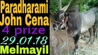 Paradharami John Cena 4 prize in Melmayil. 29.01.18