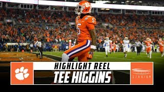 Clemson WR Tee Higgins Highlight Reel - 2019 Season | Stadium