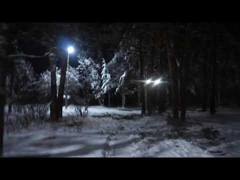 г.Луза. Зимний сад.  Вечерняя прогулка по Горсаду.  Ноябрь 2019