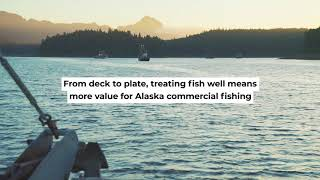 Salmon Handling tips by Alaskans for Alaskans