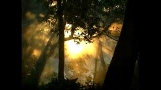 Radha Dhoondh Rahi Kisi Ne Mera Shyam Dekha By Kavita Godiyal [Full Song] Radhe Radhe Ki Japlo Mala