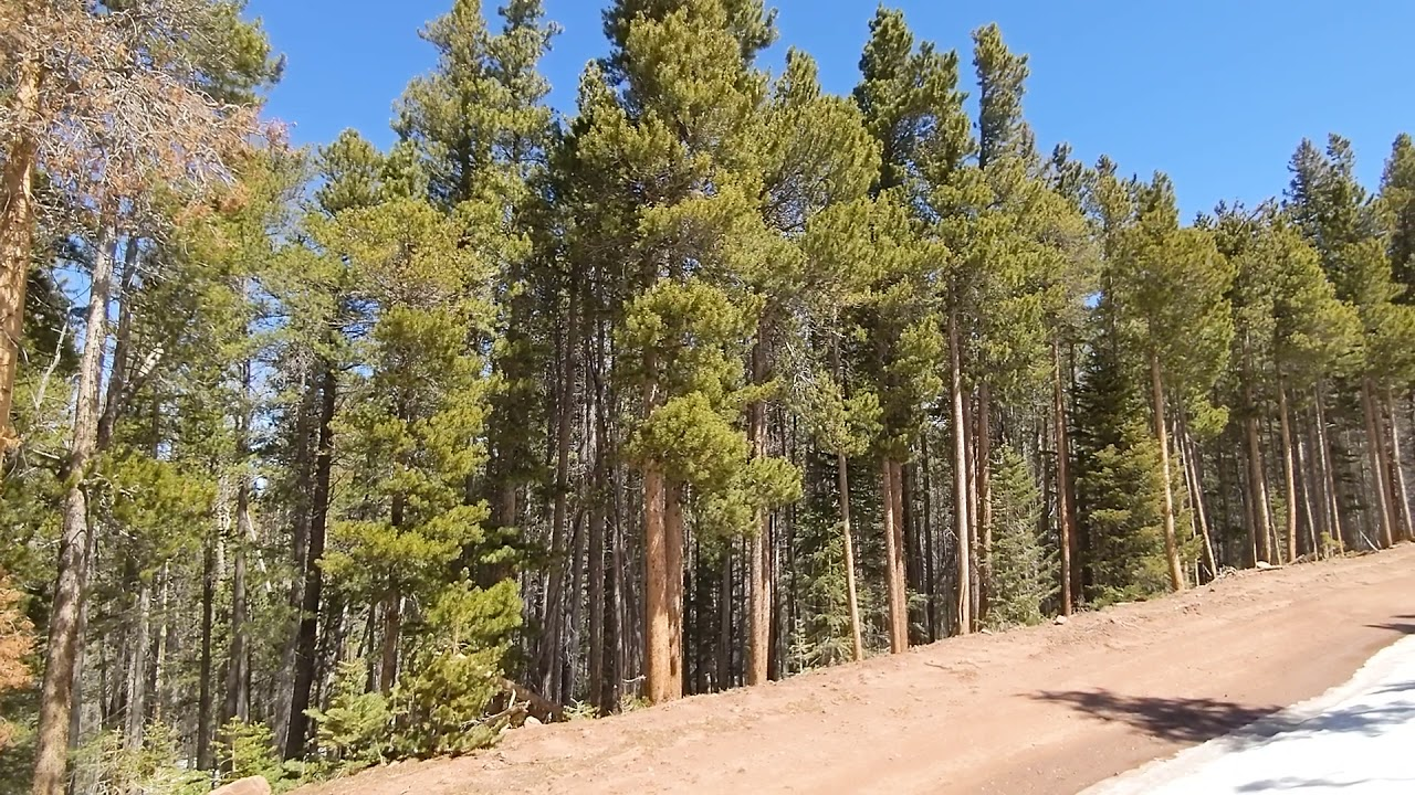 SOLD - 2.73 Acres – RV OK! In Forbes Park, Costilla County CO