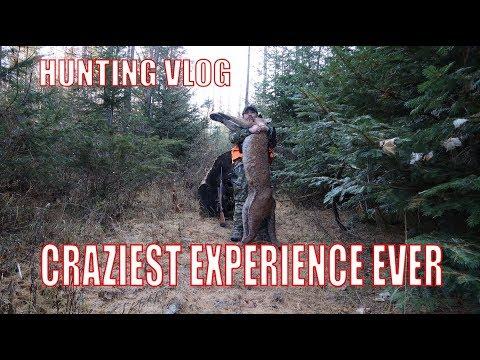 I SHOT A COUGAR WHILE DEER HUNTING