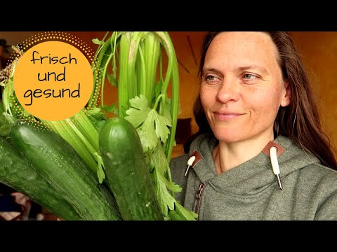 Unser Wocheneinkauf: Biokiste, Rewe, Konsum und Bioladen (fast vegan)