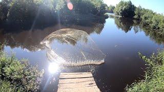 Откуда в этой маленькой речушке такие кабаны Я ОФИГЕЛ Рыбалка кастинговой сетью 6м на малой реке