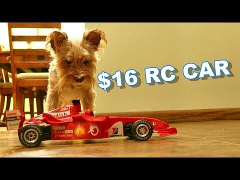 $16 RTR F1 RC Car Worth it? - F1 118th Formula Racing Car - TheRcSaylors