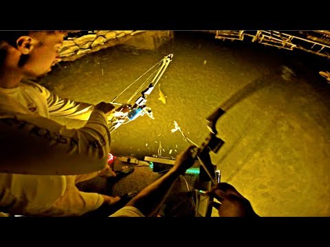 Bow Fishing FAT Carp At Night! - Bow Fishing 2019
