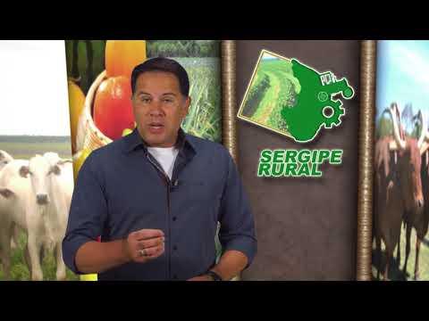 Sergipe Rural - PROGRAMA 106