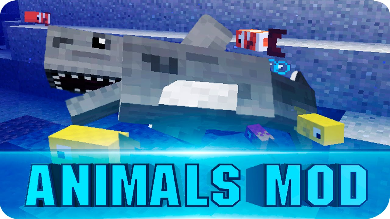 how to catch more fish in minecraft