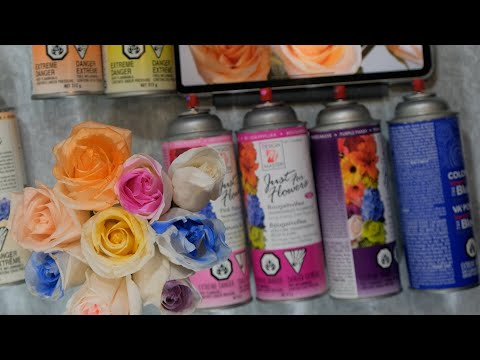 Florist's Secret: How To Make Any Colour Roses From Ivory Roses Using Flower's Spray