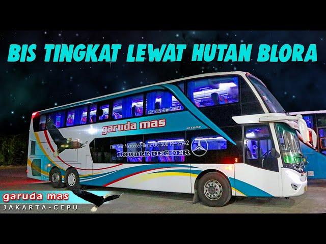 Lewat Hutan Angker Trip Report Garuda Mas Double Deckker Cepu