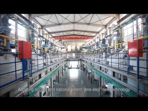 Shandong Head company video