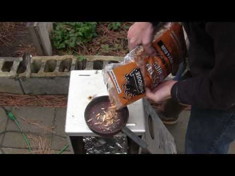 Theresa - Smoked Beers Are The Next Big Thing, Make Your Own (DIY Video)