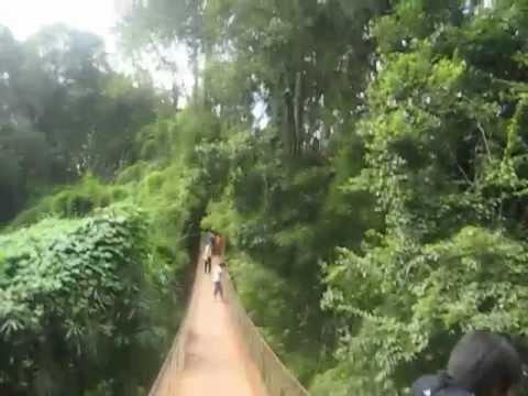 រម្មណីដ្ឋានខេត្ត រតនគិរី Ratanakiri Province Resorts