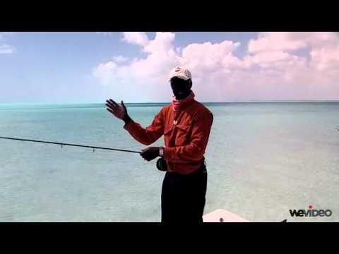 Backcasting - Capt. Shawn Leadon - Bonefishing - Andros Island Bonefish Club