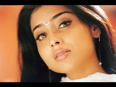 Balu Movie Song With Lyrics - Neelo Jarige- Pawan Kalyan, Shriya Saran