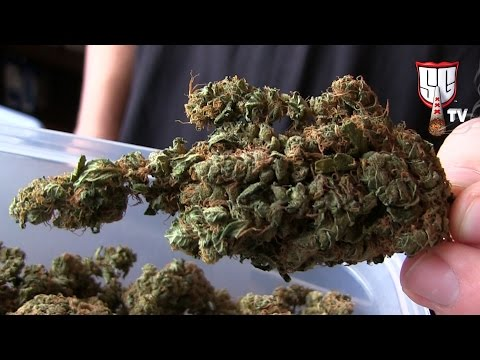 Rusland Coffeeshop Amsterdam - Weed & Hash Menu - Smokers Guide TV Amsterdam