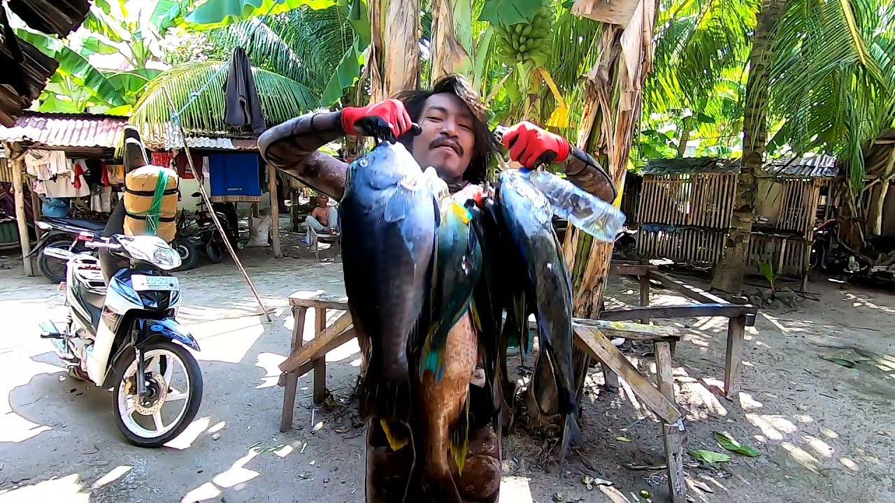 Pergi Spearfishing Di Sousu Wakatobi