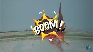Дискусы. 2-й внеконкурсный ролик Конкурса забавных и трогательных аквароликов.