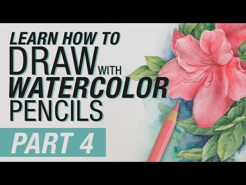 Learn How to Draw with Watercolour Pencils - Part 4