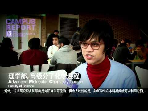 Undergraduate Degree Courses Taught in English at Tohoku University
