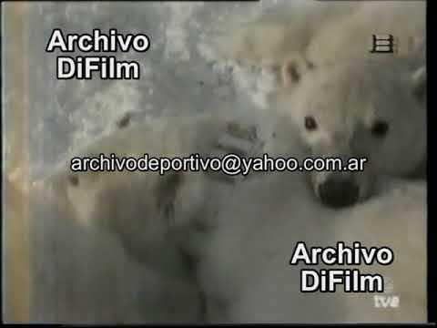 Accidente rio contaminado con gas oil en Mendoza - DiFilm (1992)