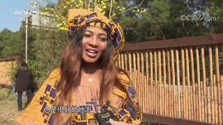 《文化十分》 20201228| CCTV综艺 - YouTube