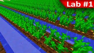 Tackle⁴⁸²⁶ Minecraft [Lab] - น้ำมีผลต่อการโตของพืช หรือไม่?