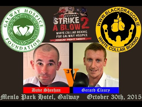 Sheehan v Cleary, Strike A Blow 2 for Galway Hospice