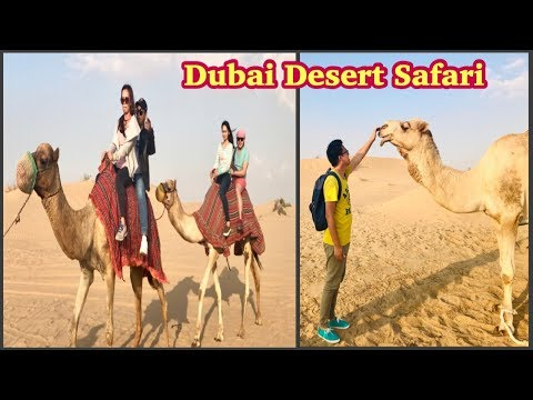 Desert Safari Experience | A Must Try Experience in Dubai UAE
