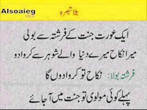 Urdu Lateefay: December 2013 (3)