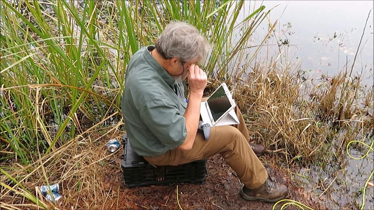 South Carolina Waters - Open Explorer