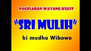 Live Streaming Wayang Kulit Lakon Sri Mulih Oleh Ki Mudho Wibowo