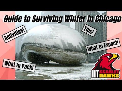 Chicago Winter Survival Guide | Illinois Tech