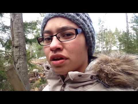 Stockholm , krogen och bio
