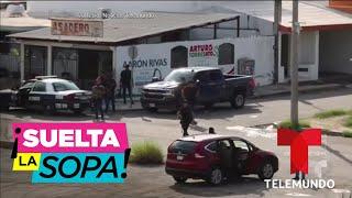 Le llueven los narcorridos a Ovidio Guzmán, hijo de El Chapo | Suelta La Sopa | Entretenimiento
