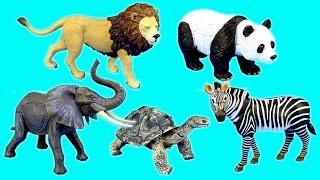 Toy Wild Animals 3D Puzzles Collection - Lion Panda Elephant Zebra Tortoise │ Animals for children