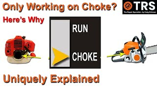 Engine Only Runs on Choke/2 Stroke Cycle/Engine Idles but won't Rev Up/BOG Down/Chainsaw/Trimmer/ATV