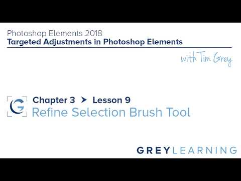 Refine Selection Brush - Photoshop Elements 2018