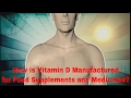 How Vitamin D Is Made For Food Supplements And Medicine mp3