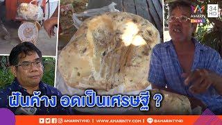 """ทุบโต๊ะข่าว-เจออีกคนเก็บ-""""อ้วกวาฬ""""-แต่หมดสิทธิ์รวย-กูรูชี้เมืองไทยไม่มีบริษัทรับซื้อ-11-03-62"""