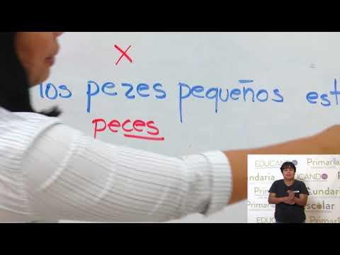 """Primaria 3º y 4º Clase: 152  Tema: Las palabras acabadas en """"z"""" forman su plural en """"ces"""""""