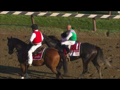 Arrogate wins the Travers Stakes