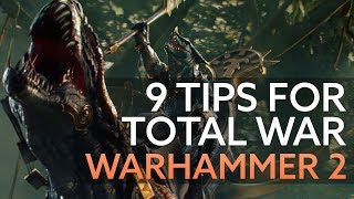 9 tips to get you started in Total War: Warhammer 2