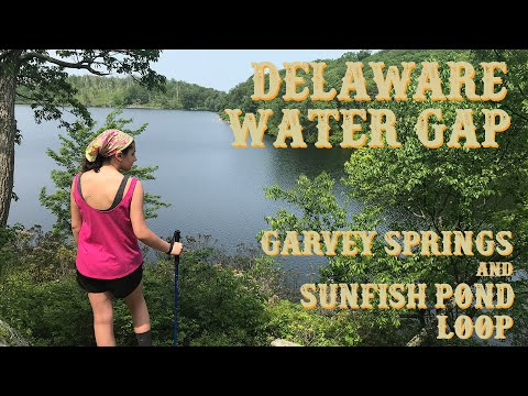 Delaware Water Gap Day Hike - Garvey Springs To Sunfish Pond (including Appalachian Trail Section)