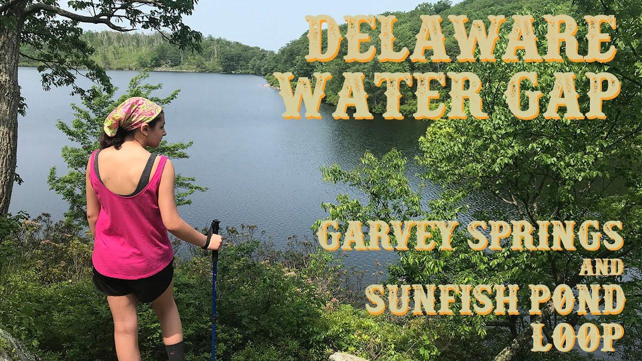 Forest fire roars in Delaware Water Gap National Recreation Area ...