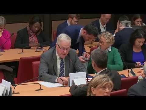 """Intervention suite au dépôt du rapport """"Pour une pêche durable en Europe"""""""